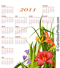 floral, calendrier, 2011