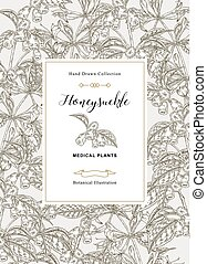 Floral card with honeysuckle plant. Hand drawn flowers and berries and leaves of honeysuckle. Vector illustration botanical.