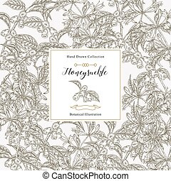 Floral card with honeysuckle plant. Hand drawn flowers and berries honeysuckle. Vector illustration botanical. Design for packaging.