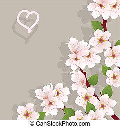 floral, cerise, fleurs, vecteur, fond