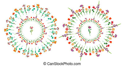 Floral circle set - frame design