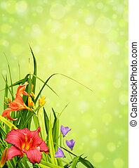 floral, coin, frontière