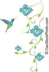 floral, colibrí
