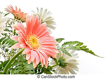 floral composition - elegant composition of Gerbera flowers...