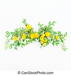 Floral composition of yellow flowers on white background. Flat lay, top view.