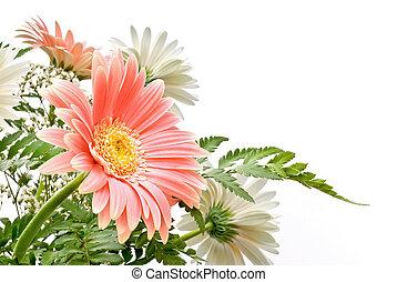 floral composition - elegant composition of Gerbera flowers...