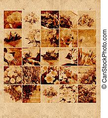 floral, conception, Arrière-plans,  retro, ton