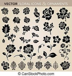 floral, conjunto, ornamento, vector