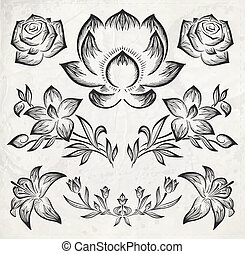 floral design elements. vector illustration