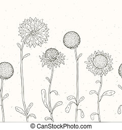 floral, dessiné, main, arrière-plan., sunflower.