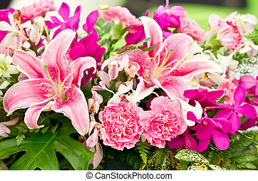 floral., disposizione