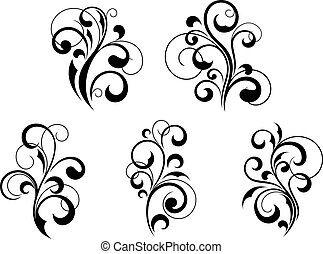 Floral elements and motifs - Set of beautiful floral...