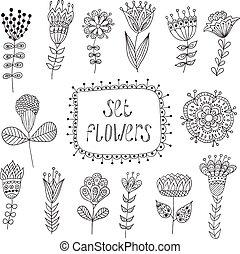 floral, elements., flowers., vendange, main, dessiné