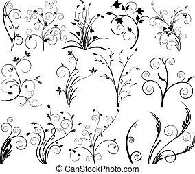 Floral elements illustration