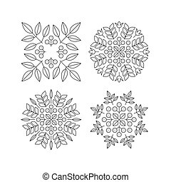 Floral Elements. Vector Printing for Natural Products. Linear Style. Abstract  illustration.
