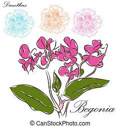 floral, escova, desenhos