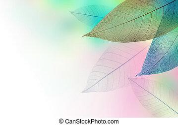 Floral frame pattern