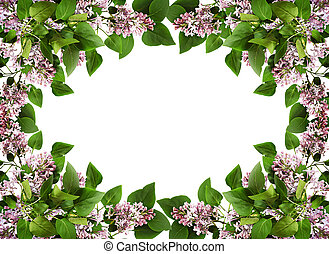 Floral frame with lilac flowers and leaves