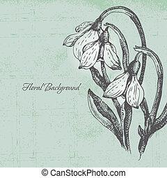 floral, fundo, com, snowdrop, em, estilo retro