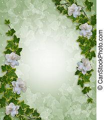 floral, gardenias, grens, klimop