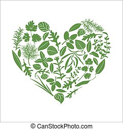 Floral heart made of herbs and flowers. Herbs in heart shape...