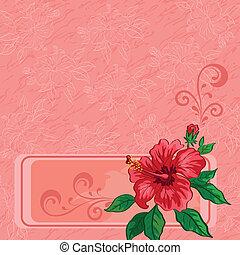 floral, hibisco, plano de fondo, contornos