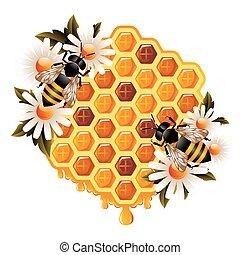 Floral Honey Concept - Honey concept representing honeycomb...
