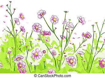 Floral illustration on white background