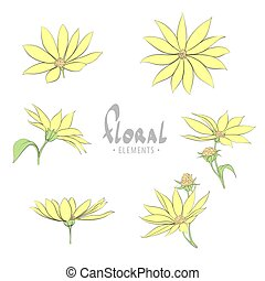 yellow flowers - FLoral illustration with yellow flowers