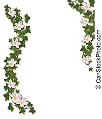 floral, klimop, grens, plumeria, uitnodiging