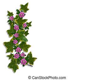 floral, lierre, frontière, conception