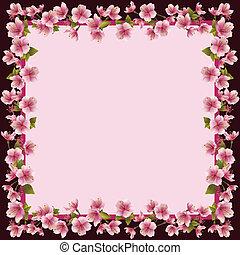 floral, marco, con, sakura, flor, -, japonés, cerezo