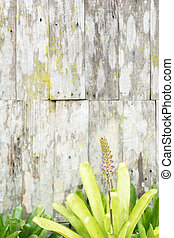 Floral on old wooden background