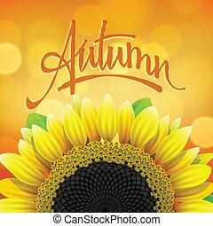 floral, otoño, plano de fondo, girasol