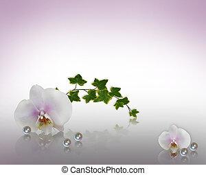 floral, pérolas, borda, orquídeas