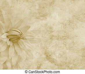 big dahlia flower on paper or parchment
