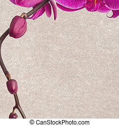 floral, papier, achtergrond