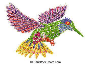 floral, paradis, humming-bird