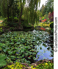 Floral park Butchart Gardens - In pond, overgrown with ...