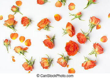 Floral pattern made of orange roses on white background. Flat lay, top view. Mother's day background. Floral pattern.