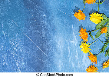 Floral pattern of calendula flowers on blue background. Floral background.