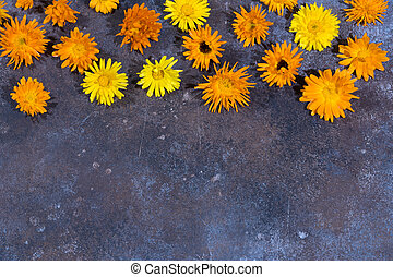 Floral pattern of calendula flowers on grey background. Floral background.