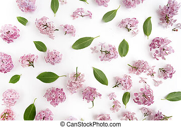 Floral pattern of lilac flowers and leaves on white. Flat lay, top view.
