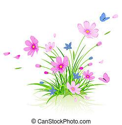 floral, plano de fondo, con, cosmos, flores