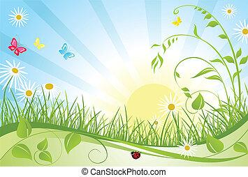 floral, primavera, tarjeta