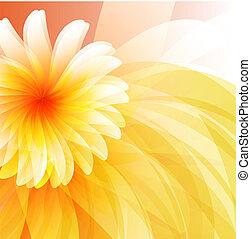 floral, résumé, fond