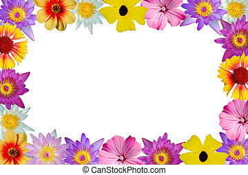 floral rand