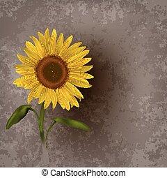 floral, resumen, grunge, plano de fondo, girasol