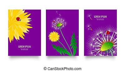 Floral set of posters, flyers or cards with dandelions field flowers. Vintage retro templates design. Spring or summer bright yellow flowers, seed heads and red ladybugs on bright purple background