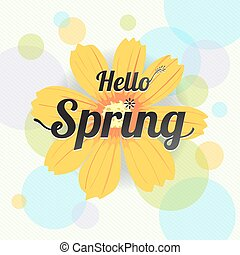 Floral spring with yellow flower and colorful background